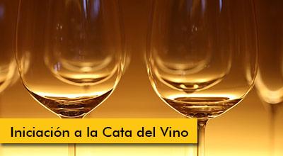 Banner-cata-del-vino