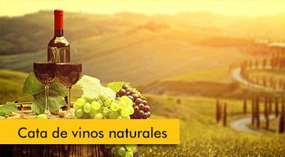 Cata-de-vinos-naturales