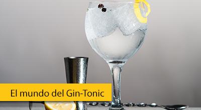 curso-gin-tonic